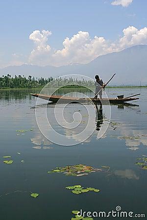 Boy collecting lake grass