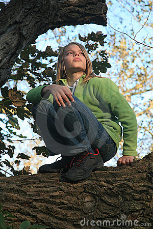 Boy crouching on tree branch
