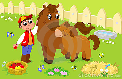 Boy with cute horse and colt.