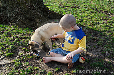 boy and dog Stop eating my ice cream!