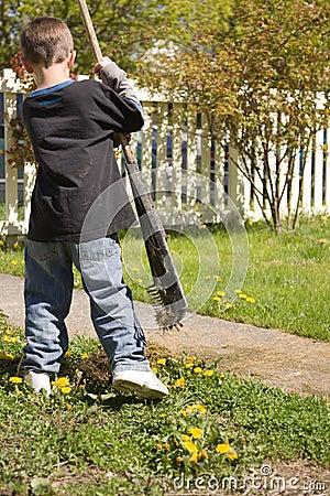 Boy doing yardwork