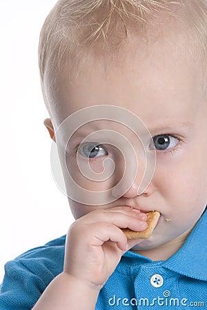 Boy Is Eating Coockie