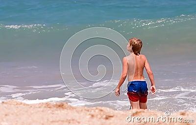 Boy exploring beach