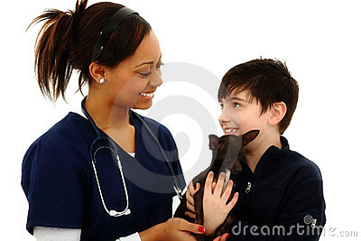 Boy Gets Pet Chihuahua Back From Veterinarian