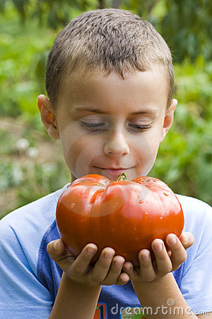 Boy with giant tomato