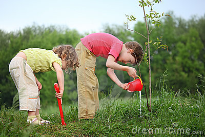 Boy and girl pour on  planted tree