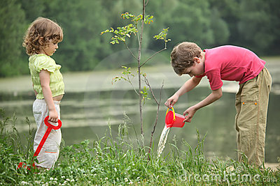 Boy and girl pour on seedling of  tree