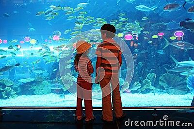 Boy and girl in underwater aquarium tunnel