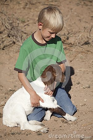 Boy green shirt with baby goat