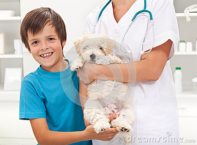 Boy and his beloved dog at the vet