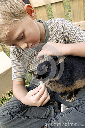 Boy with his first pet