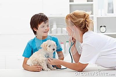 Boy and his fluffy dog at the veterinary checkup