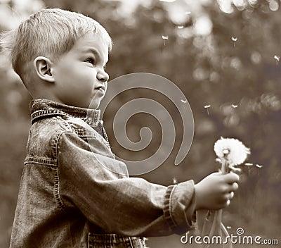 Boy holding dandelion  clock