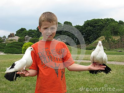 Boy holding a dove