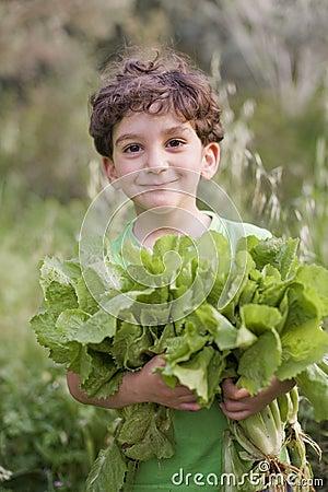 Boy holding organic lettuce