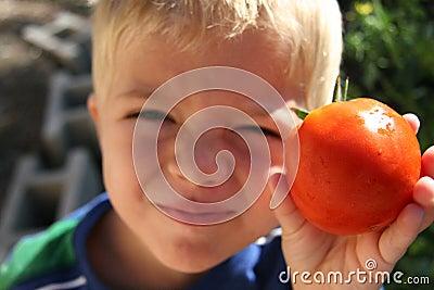 Boy holding tomato in garden