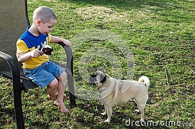 boy ice cream and pug dog