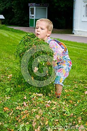 Free Boy In The Grass Stock Photos - 33366943