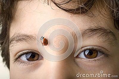 Boy with ladybug