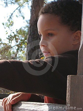Boy Looking Over Fence