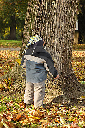 Boy looking at tree