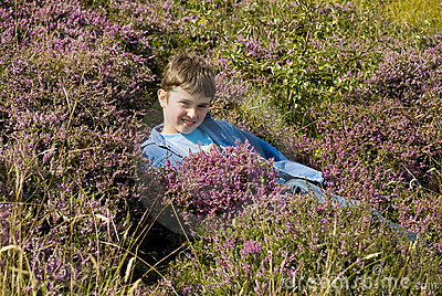 Boy lying in the heather