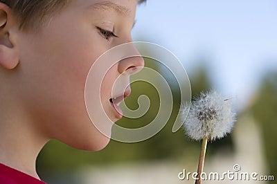 Boy Makes A Wish On A Dandelion
