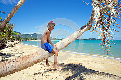 Boy on a palm tree