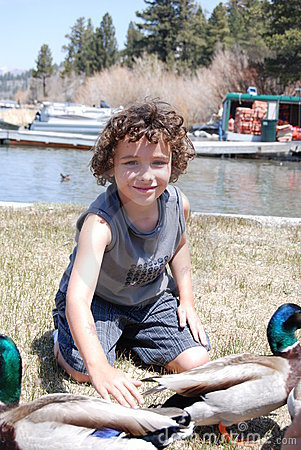 Free Boy Petting A Duck Stock Photography - 5240452