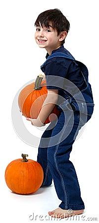 Free Boy Picking Pumpkins Royalty Free Stock Photo - 11764405