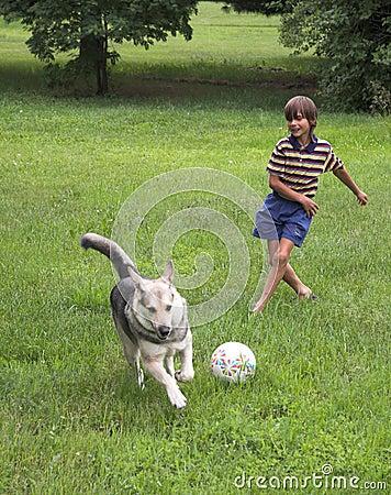 Boy play with dog