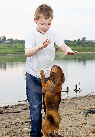 Boy play on the lake bank with dog