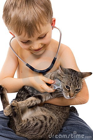 Free Boy Playing With Cat And Stethoscope Royalty Free Stock Photos - 1827388