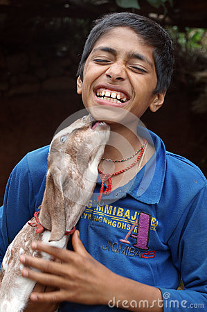 Free Boy Playing With Goat Stock Photography - 55151442