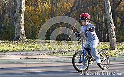 Boy riding bicycle at park #2