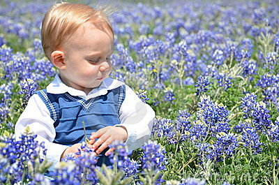 Boy Sitting in Flowers