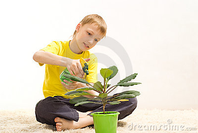 Boy sitting watering flower