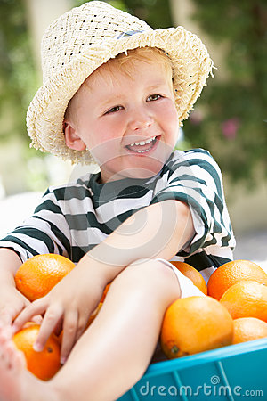 Boy Sitting In Wheelbarrow Filled With Oranges