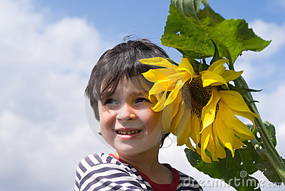 The boy and sunflower