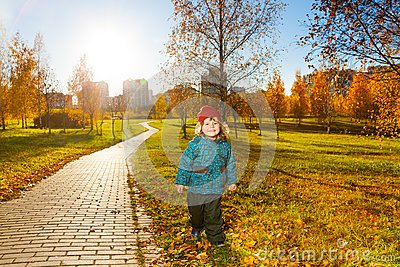 Boy in sunny autumn park