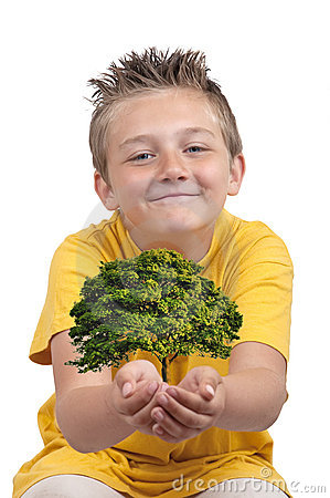 Boy with tree in palm