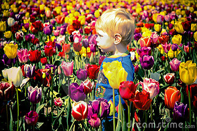 Boy and Tulips