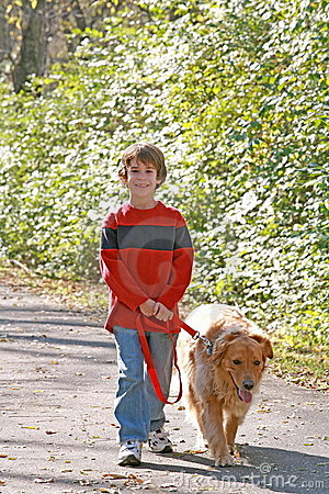 Free Boy Walking The Dog Royalty Free Stock Image - 4334856