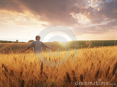 Boy walking through wheat field