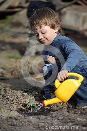 Boy watering sprout