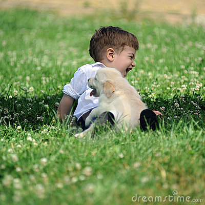 Free Boy With His Dog In The Park Royalty Free Stock Photography - 23700057