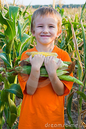 Free Boy With The Corn Royalty Free Stock Photos - 15581078