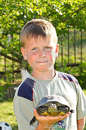 Free Boy With Turtle Royalty Free Stock Image - 19845096