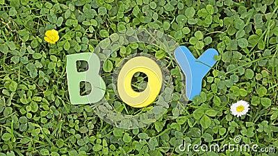 Boy written