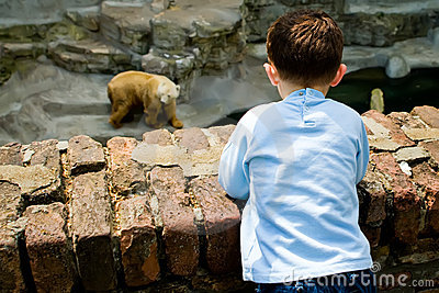 Boy at the Zoo